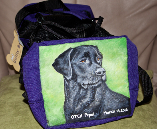 Agility Utility Bag Painted by Pet Portrait Artist Donna Bobrowskil