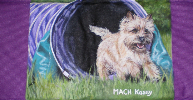 An Agility Chair Back Painted by Donna Bobrowski.